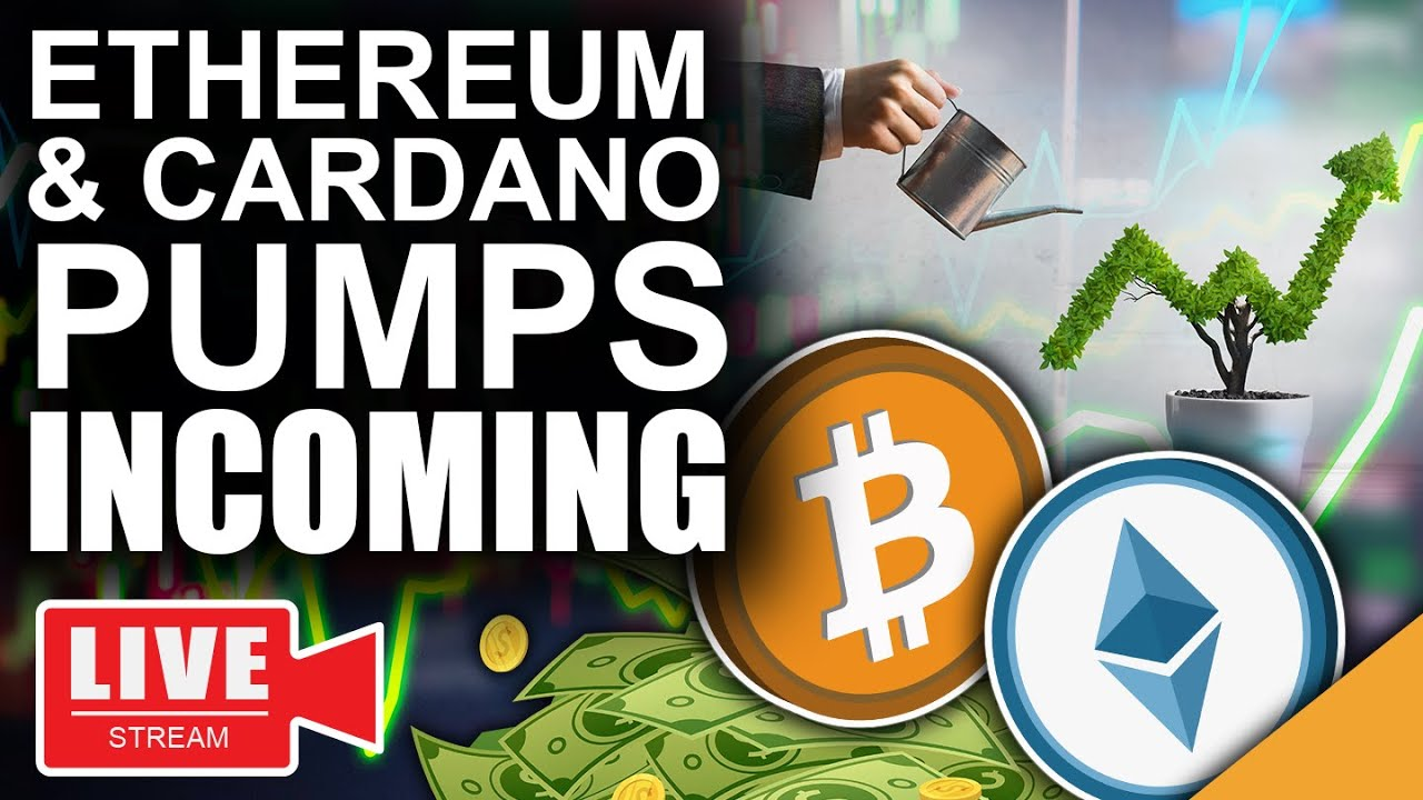 Think Like A Bitcoin Millionaire (Ethereum & Cardano Pumps Incoming)